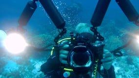 Mensen het duiken Caraïbische overzeese onderwatervideo stock video