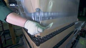 Mensen het gezette omhoog sluit verpakken op dozen, De dozen van arbeidersomslagen met lege flessen bij een fabriek stock video