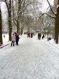 Mensen in het park in de sneeuwdag Royalty-vrije Stock Foto