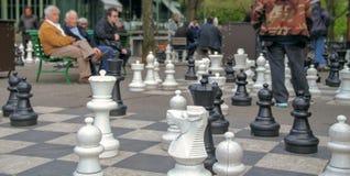 Mensen in het park die reusachtig schaak spelen Stock Foto