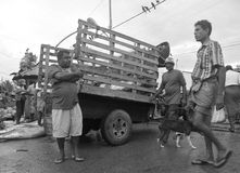 Mensen - Negombo vissenmarkt -1 (Sri Lanka - Azië) Stock Afbeeldingen