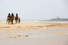 Mensen op de kameel bij het strand Royalty-vrije Stock Fotografie