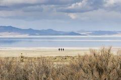 3 mensen op de kust van Great Salt Lake, Utah Stock Fotografie