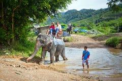 Mensen op de olifantstrekking in het Nationale Park van Khao Sok stock foto's