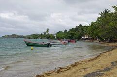 Mensen op strand in Presqu ` Ile DE La Caravelle op 1,2017 Januari, Martinique, Stock Foto's