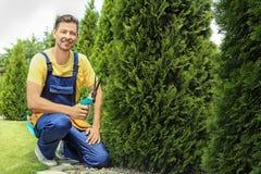 Mensen in orde makende struiken in tuin stock fotografie