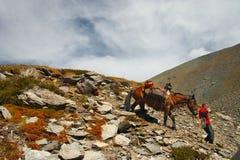 Mensen, paard en bergen. Royalty-vrije Stock Afbeeldingen