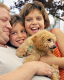 Mensen-puppy Stapel stock foto's