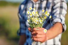Mensen` s hand die een boeket van madeliefjes, het concept verhouding en liefde houden stock fotografie