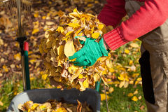 Mensen schoonmakende tuin van bladeren Stock Afbeeldingen