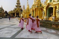 Mensen in Shwedagon-pagode, Myanmar Royalty-vrije Stock Fotografie
