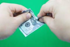 Mensen tearing dollars op groene achtergrond royalty-vrije stock fotografie