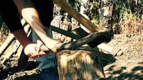 Mensen verdeeld hout in het bos met een bijl stock videobeelden