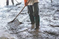 Mensenarbeiders die vers gegoten concrete mengeling uitspreiden Stock Foto's