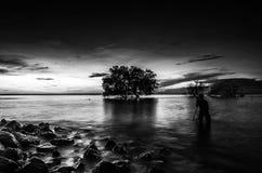Mensenfotografie de dode boom door het overzees met mooi m Stock Afbeelding