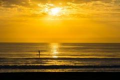 Mensenpeddel die bij Zonsopgang surfen Royalty-vrije Stock Fotografie