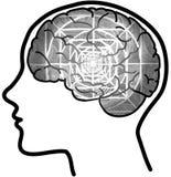 Mensenprofiel met zichtbare hersenen en grijze mandala Stock Afbeeldingen
