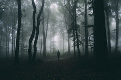 Mensensilhouet op Halloween-nacht in donker geheimzinnig bos met mist stock foto