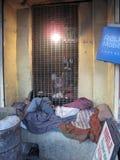 Mensenslaap op de straat, Kolkata Stock Foto's