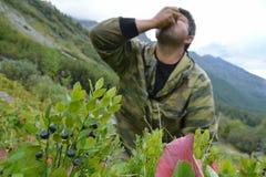 Mensentoerist die bosbessen op de hellingen van bevrijde Barguzin eten Stock Foto's
