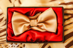 Mensenvlinderdas in doos met rood Gouden zijdetoebehoren Royalty-vrije Stock Foto