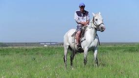 Mensenzitting op een Wit Paard en het Bekijken Camera stock footage
