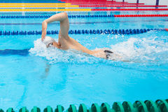 Mensenzwemmer het zwemmen kruipt in blauw water stock foto's