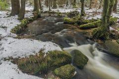 Mensi Vltavice river in snow winter day stock photos