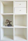 Mensola I dei bonsai immagini stock