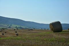 Mensonge de balles de foin dans un paysage Photographie stock
