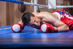 Mensonge de boxeur assommé dans une boucle de boxe Image stock