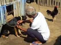 Mensonge de chien et vieil homme Images libres de droits