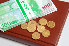 Mensonge financier de l'épargne sur le carnet Photographie stock libre de droits