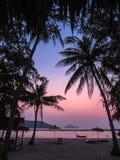 Mensonge sous des palmiers au coucher du soleil images libres de droits