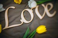mensonges en bois d'amour d'inscription Image libre de droits