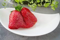 Mensonges peu communs originaux de forme de grandes fraises m?res d'un beau plat blanc sur un fond gris Copiez l'espace images libres de droits