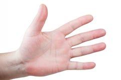 Menspalme mit Fingerverbreitung Stockfoto