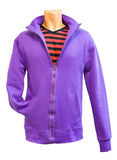 Menssweatshirt, Ausschnittspfad lizenzfreie stockbilder