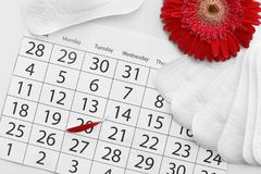 Menstrual pads and calendar with red flower petal. On table, top view. Gynecological care royalty free stock images