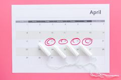 Menstrual period concept. Menstruation calendar with hygienic tampons on pink background top view royalty free stock photo