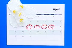 Menstruation cycle concept. Menstruation calendar with sanitary pads and delicate flowers on blue background top view.  stock images