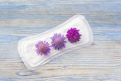 Menstruation sanitary soft pad with flowers, hygiene protection. Daily, menstrual woman pads for hygiene or blood period. Woman cr Stock Images