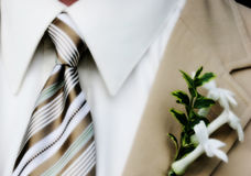 Menswear, wedding. Close-up of well dressed gentleman Royalty Free Stock Image