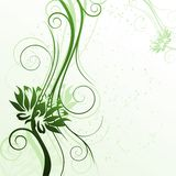Menta. Floral green cover with flowers,  illustration Stock Images