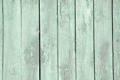 Menta de madera del color Fotos de archivo