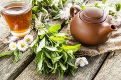 Menta e tè fragranti Fotografie Stock