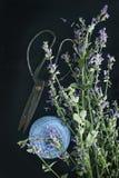 Menta, forbici e filo di fioritura - natura morta Fotografie Stock Libere da Diritti
