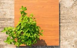 Menta fresca in un vaso su un fondo di legno Fotografia Stock