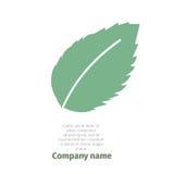 Menta Insignia para la compañía Hojas de menta aisladas en el fondo blanco Imagen de archivo
