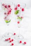 Menta y bayas rojas en cubos de hielo en fondo del blanco de los vidrios Imagenes de archivo